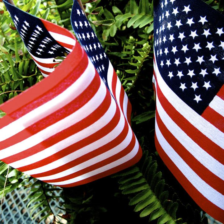Close-up shop of American Flags