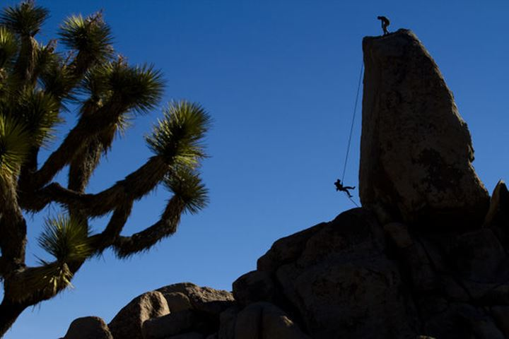 A female climber rappels off of Headstone Rock in Ryan Campground, Joshua Tree National Park, California on March 30, 2011.