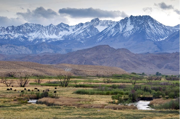The Eastern Sierra Nevada mountains rise above the Owens River just outside of Bishop, CA.