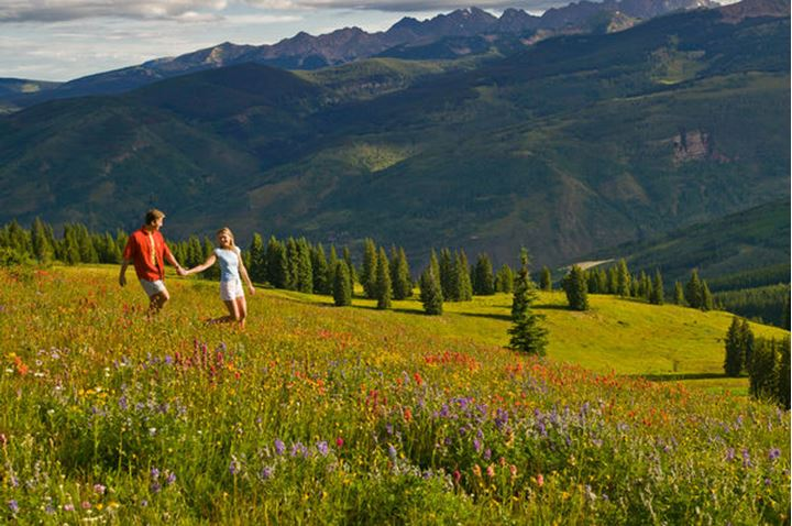 A couple hikes on a path through blooming Colorado wildflowers high atop a Rocky Mountain ridge line on a clear and warm Summer morning.
