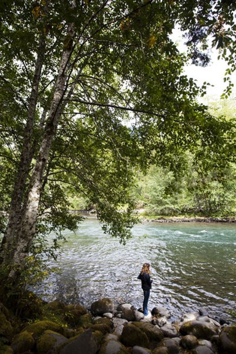 ELWHA RIVER, OLYMPIC NATIONAL PARK, WASHINGTON, USA. A woman stands on the edge of a river on a sunny day.