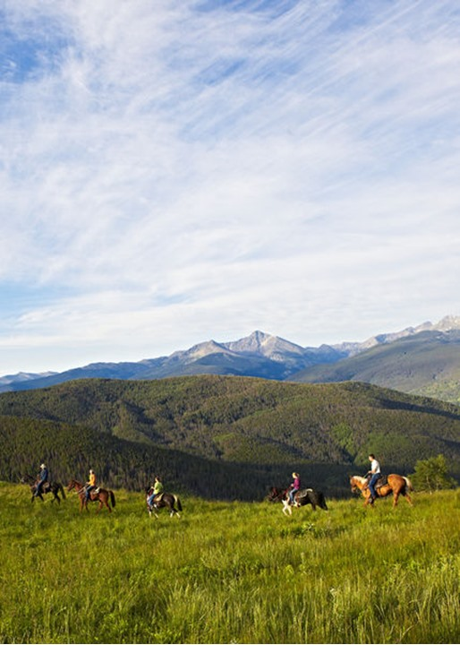 A group of riders enjoys an early morning horseback adventure in a high alpine mountain Summer meadow