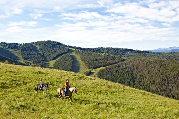 A lone cowboys rides his horse in a high alpine mountain Summer meadow