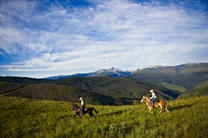 Two cowboys gallop their horses in a high alpine mountain Summer meadow