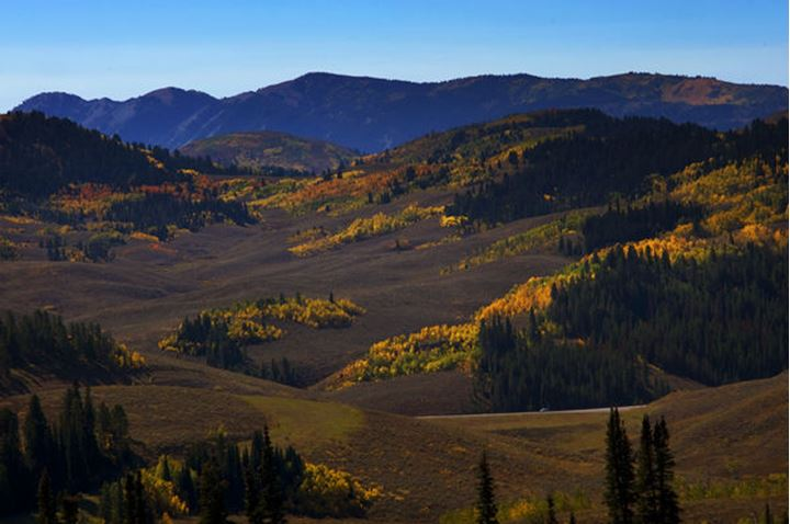Fall colors light up the countryside in Western Wyoming.