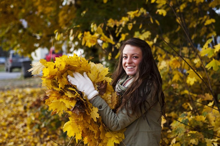 A athletic young woman smiling holds a large pile of orange leaves in the fall near Sandpoint, Idaho.
