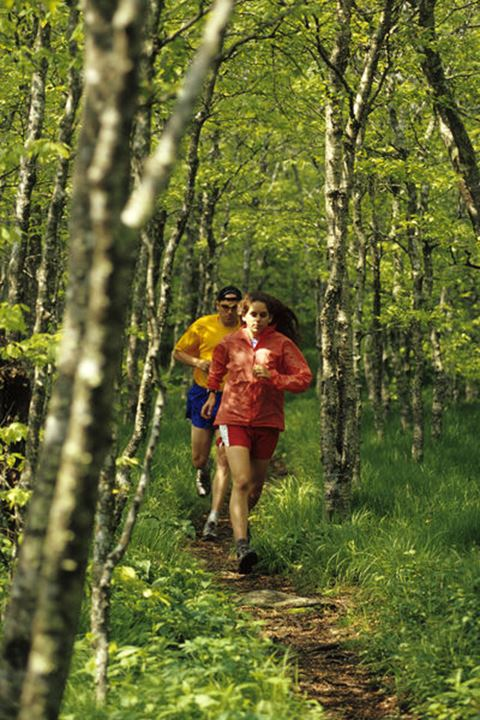 Anne Riddle and Jay Curwen out for a trail run in a lush grove of birch trees along the Mountains To Sea Trail atop Bullhead Mountain north of Asheville, NC