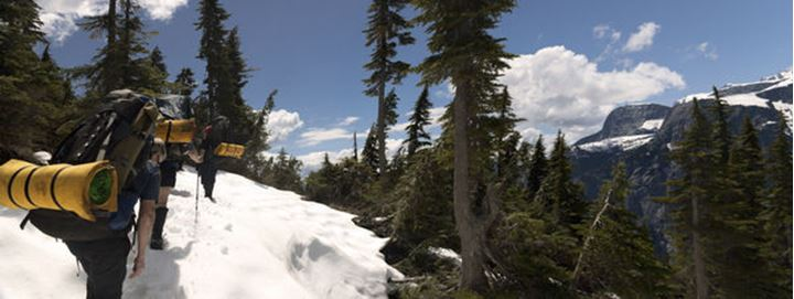 A team of hikers navigate subalpine forest and snow as they approach their summit destination.