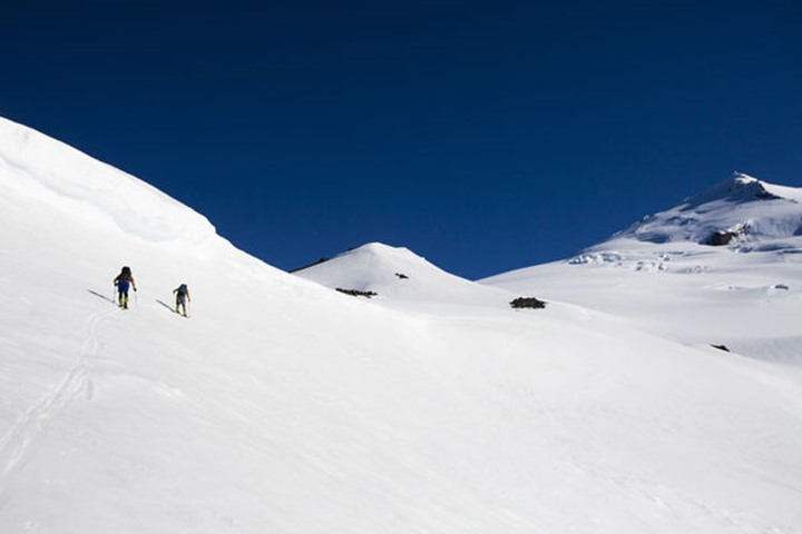 Skiers skin up a wide open bowl at sunrise on a blue bird day on Mt. Baker in Cascades of Washington.
