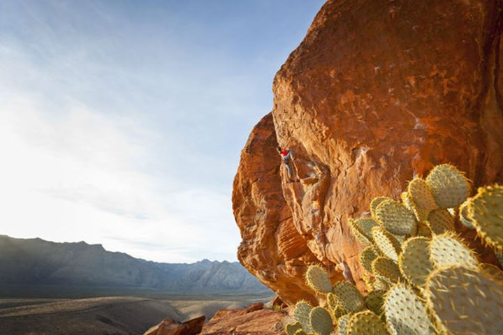 Sabina Allemann, 49 years old, is climbing 'One Eyed Jacks' rated 5.11a, in the Calico Hills area of Red Rock Canyon National Conservation Area on 17th November 2011, Nevada, USA.
