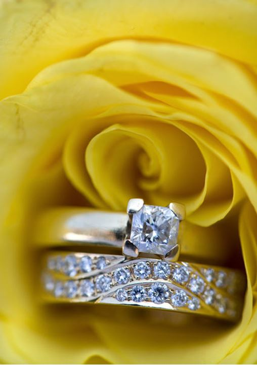 A close up picture of two diamond rings in a yellow rose