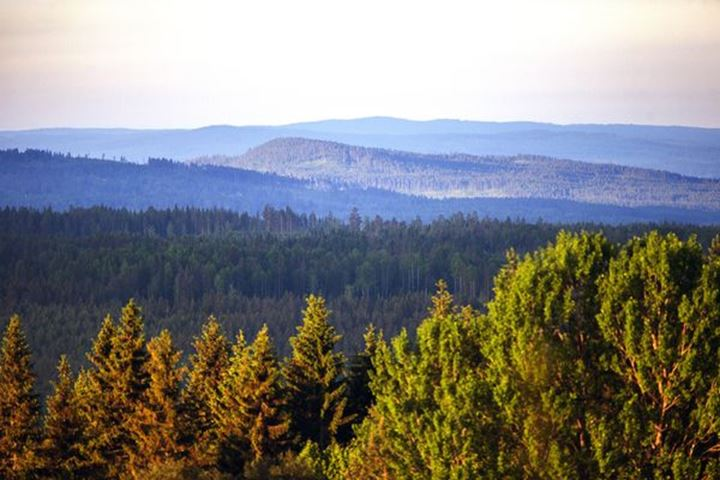 View of wooded mountains, Dalarna.