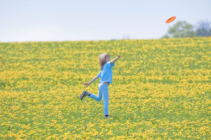 Boy Throwing Frisbee in Meadow of Dandelions