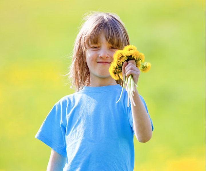 Boy Holding a Bunch of Dandelions in a Spring Meadow