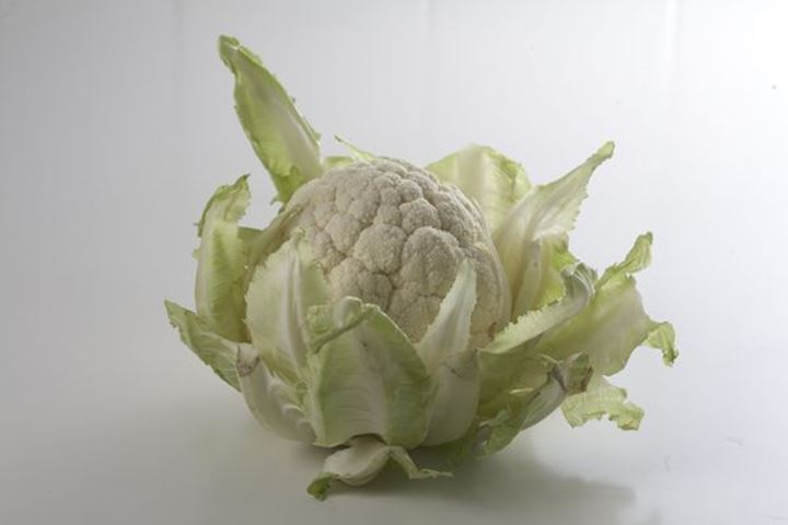 """Food whitch can prevent cancer. Photo from \""""Matfrisk\""""  my book was number two in world cookbookaward 2013.\rProf Lars Fransen, prof Lars Beckman. Cauliflower"""