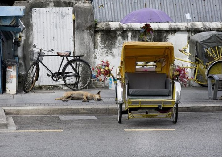 A dog is sleeping in the heat, beside a trishaw, Georgetown, Penang Malaysia