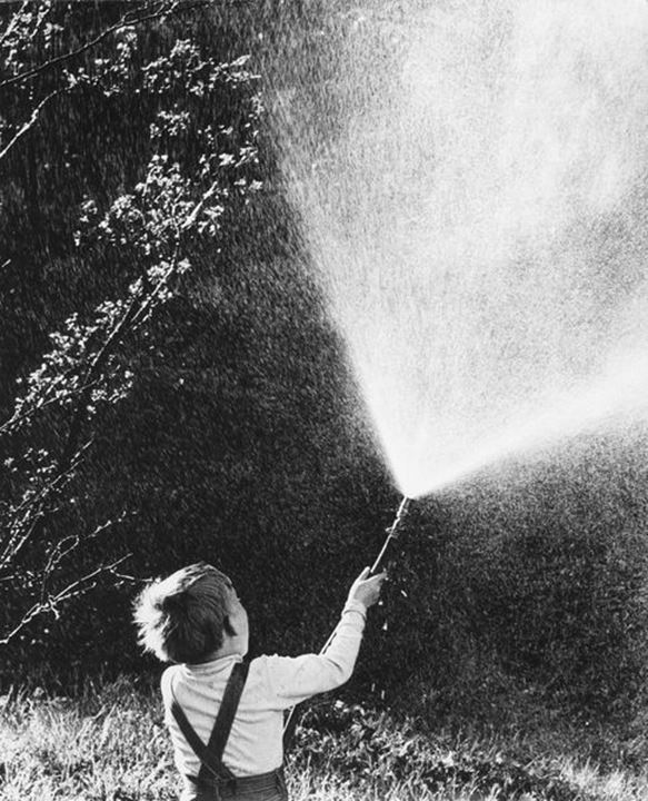 Little boy playing with gardenhose. 60s