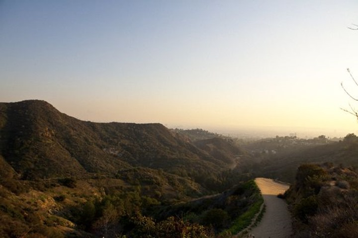 Hollywood hills, Los Angeles, California, USA