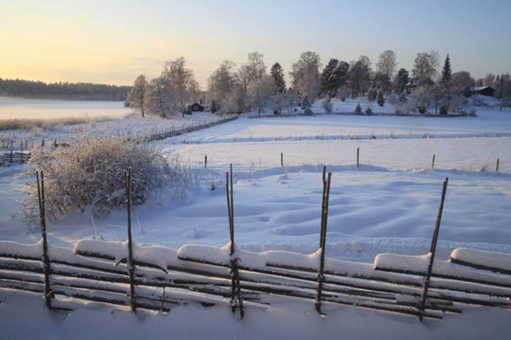 Snow covered, Uppland, Sweden