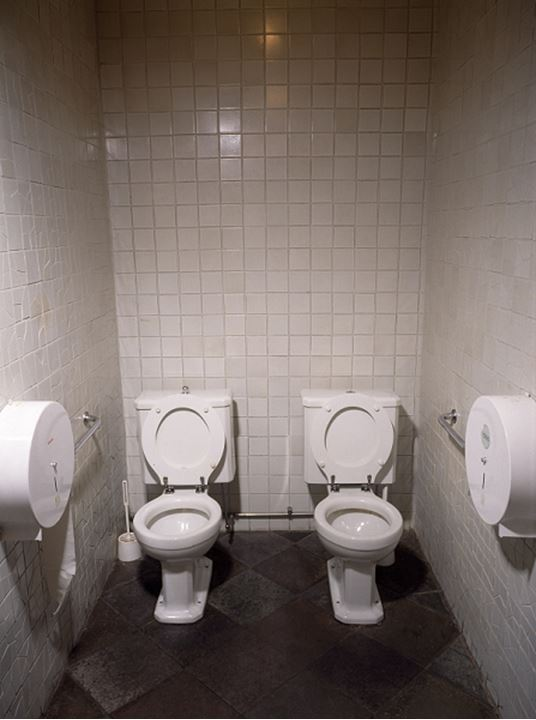 High angle view of two toilet seats