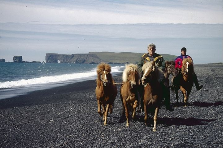 Two people riding Icelandic horses by the seashore, Dyrholaey in background
