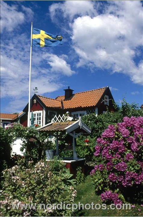 A swedish flag fluttering over a  house and garden