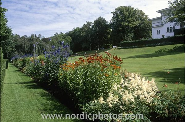A row of flowers in a beautiful garden