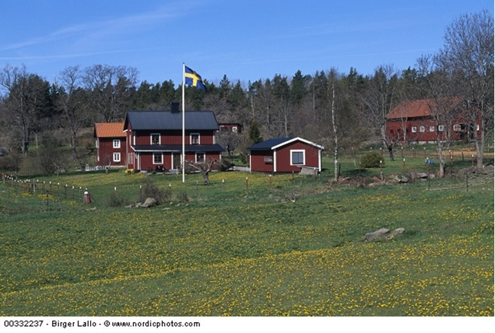 Red houses and Swedish flag waving in the field
