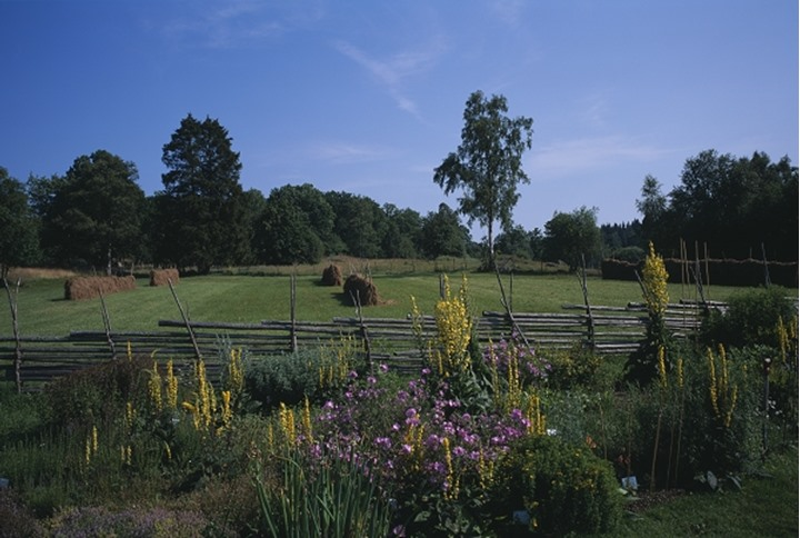 Plants and trees in a farm with wooden fence
