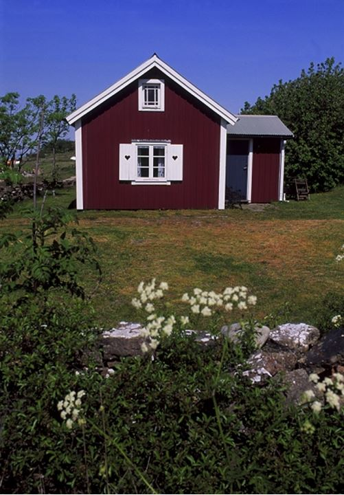 A red cottage with plants