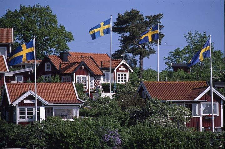 Homes with Swedish flags and trees