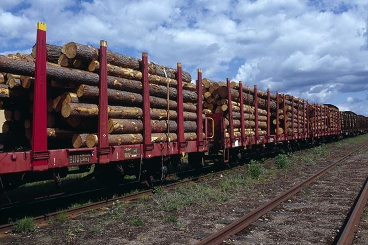 Freight train carrying a cargo of logs