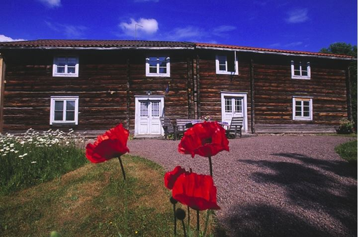 Facade of a house with red flowers