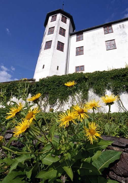 Low angle view of white castle with ivy and flowers