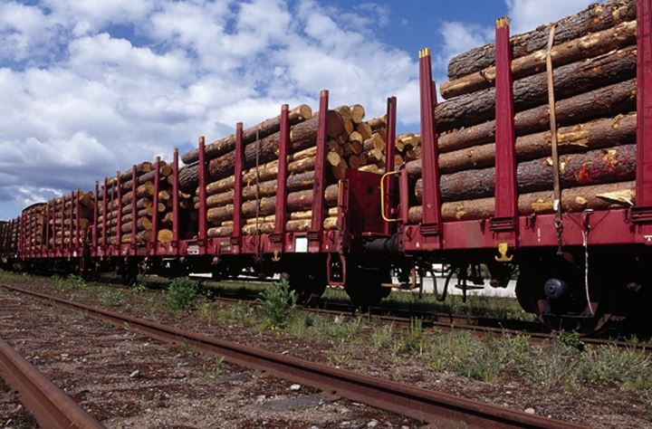 Freight train carrying logs