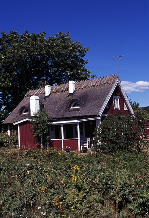 A red cottage with chimneys and trees
