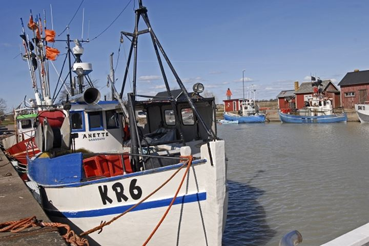 Fishing boats moored at harbour by river