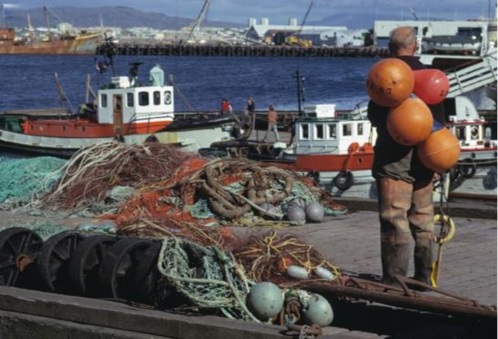Rear view of a man on a pier, fishing nets in front of him, view over the harbour in the background.