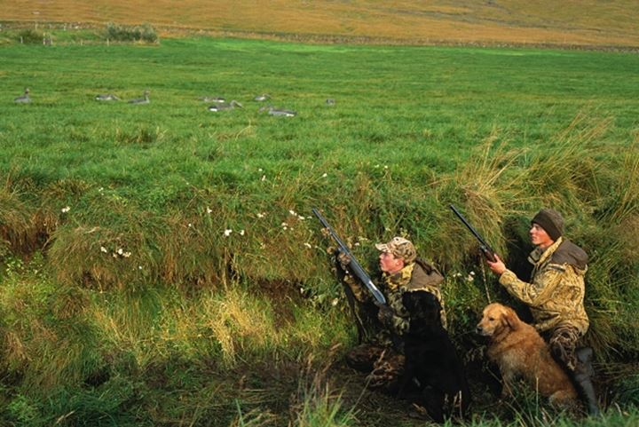 Two hunters wearing camouflage-clothes, with shotguns and a dog