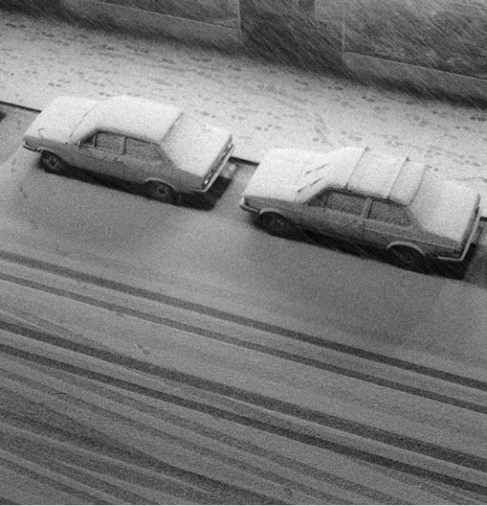Cars parked outdoors covered with snow