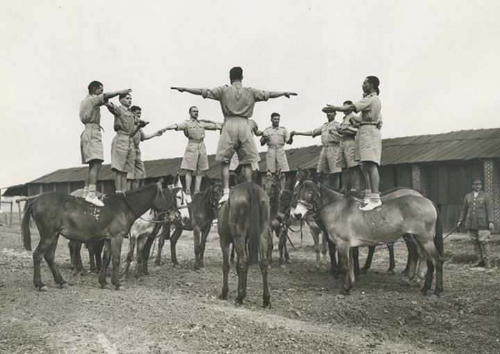 Soldiers standing on the backs of donkeys