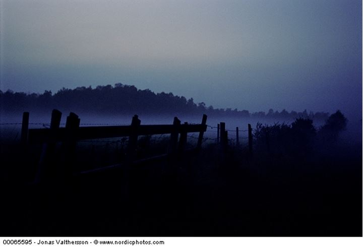 Silhouette of a fence