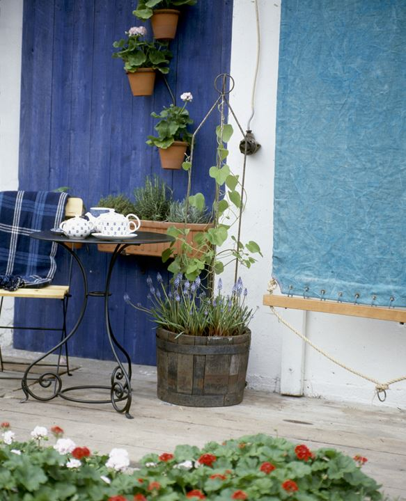 A tea set on a small table and potted plants on a terrace