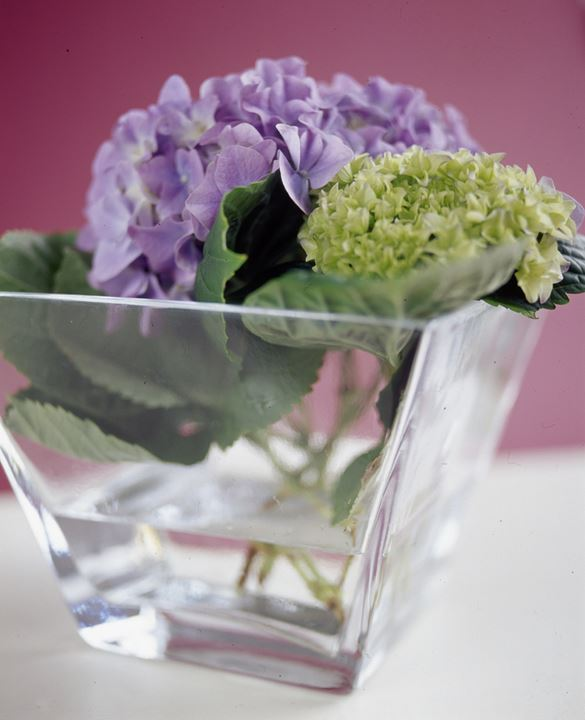 Small flowers in a transparent vase