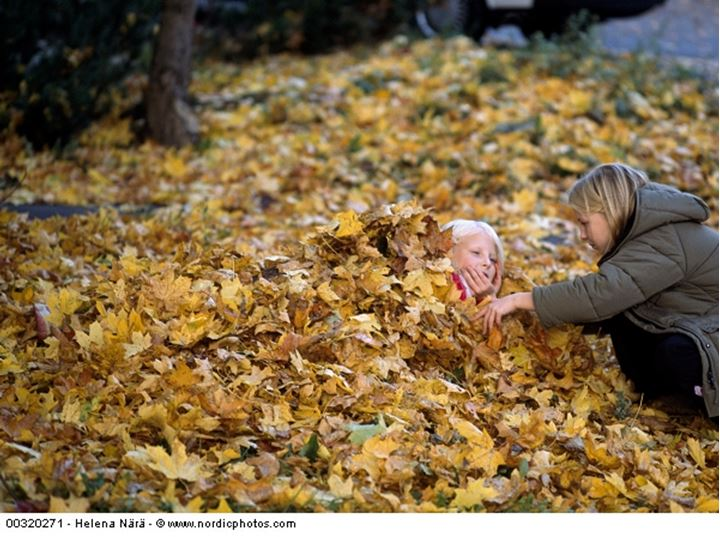 Sisters playing in fallen leaves