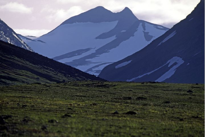 A view of snowy mountains from a grassy slope