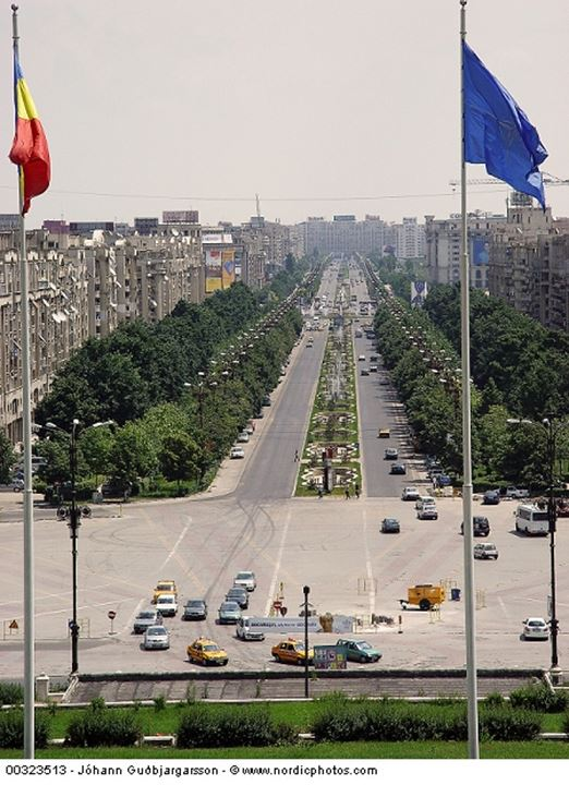 View of an avenue