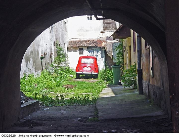 View from an archway of a car in the backyard