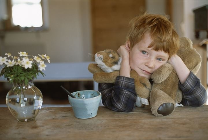 Boy with teddy bear and lion,Sweden