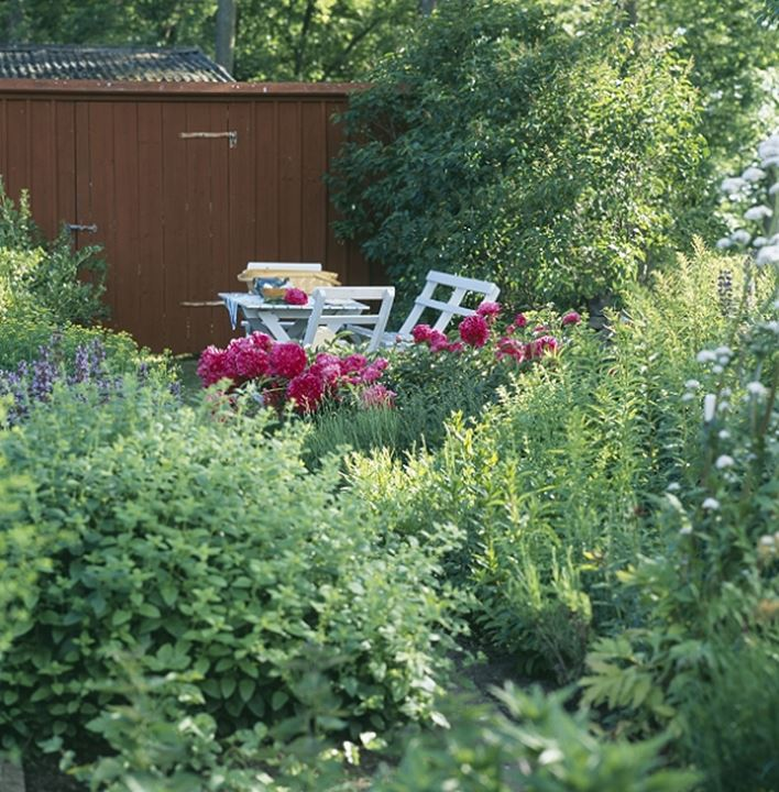 Patio furniture by a garden shed